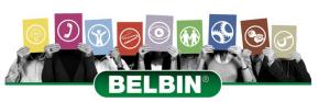 Belbin Profiling Jambar Team Building